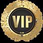 vip-logo-png.png