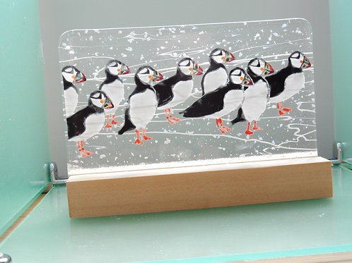 Fused Glass Puffins