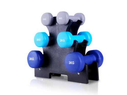 6 Piece Dumbbell Weights Set 12kg with Stand