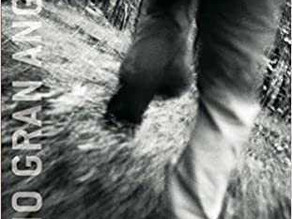 """El llibre de la setmana: """"Los ojos del lobo"""" de Care Santos Torres"""