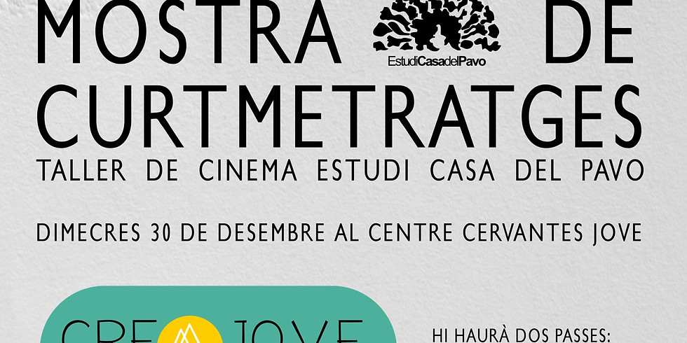 """MOSTRA DE CURTMETRATGES DEL """"TALLER  DE CINE ESTUDIO CASA DEL `PAVO"""""""