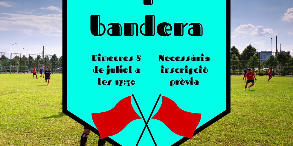 ATRAPA LA BANDERA