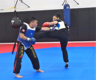 2017 Eagle_Tiger Training Progression Re