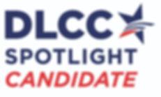 DLCC Website Graphic.jpeg