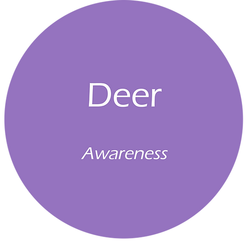 Deer Totem AuraMist