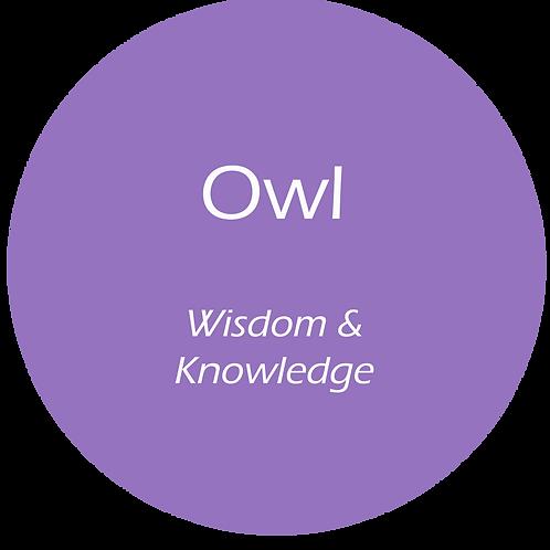 Owl Totem AuraMist