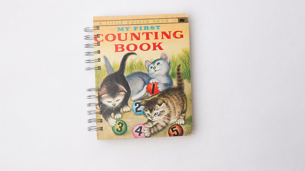 My First Counting Book  - LGB Notebook Blank