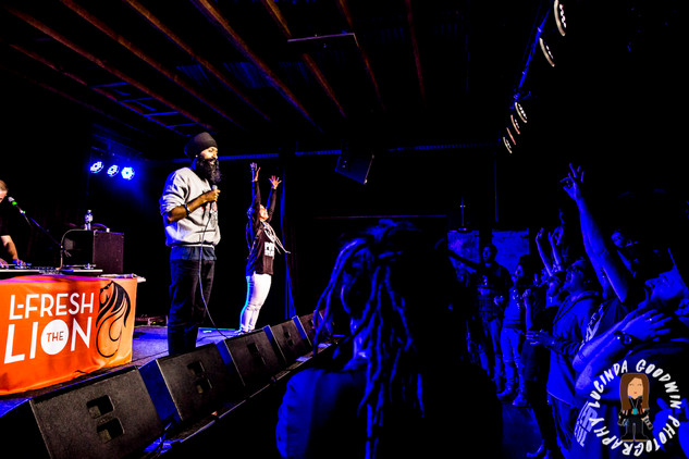 LG__20160903_00167_L_-_Fresh_The_Lion___Workers_Club,_Geelong