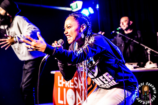 LG__20160903_00083_L_-_Fresh_The_Lion___Workers_Club,_Geelong