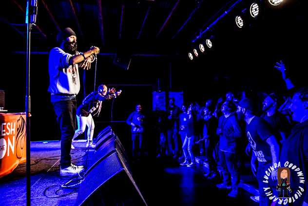 LG__20160903_00170_L_-_Fresh_The_Lion___Workers_Club,_Geelong