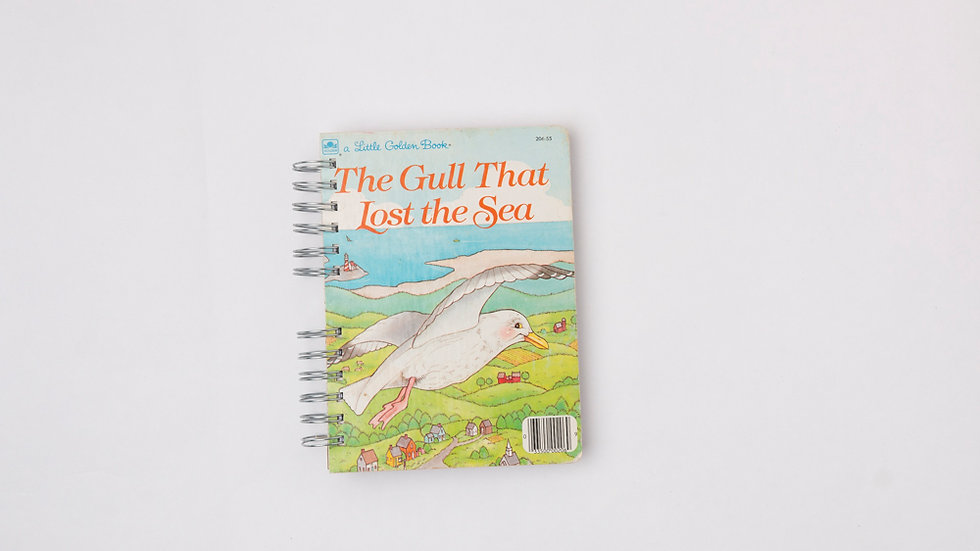 THE GULL THAT LOST THE SEA - LGB NOTEBOOK