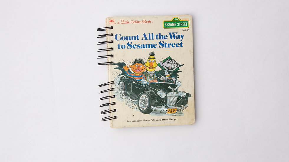 Count All the way to sesame Street - LGB NOTEBOOK (LINED)