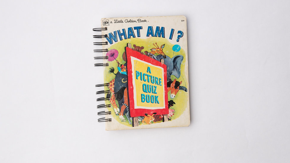 What Am I? - LGB NOTEBOOK (LINED)