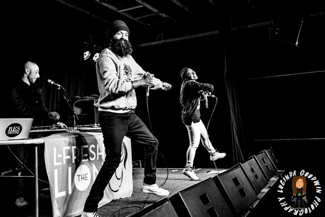LG__20160903_00085_L_-_Fresh_The_Lion___Workers_Club,_Geelong