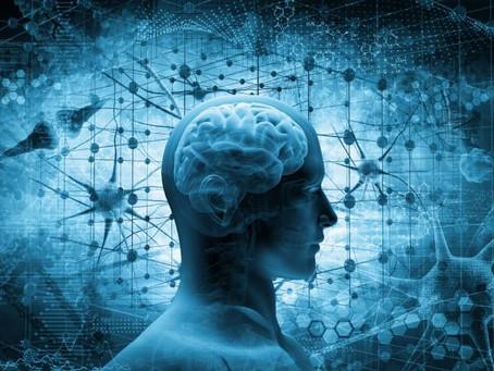 """Startup cria """"mini cérebro"""" para combater doenças e recebe US$ 25 milhões"""