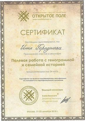 Полева работа с генограммой и семейной историей Инесса Боровская