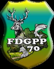 Logo-FDGPP70