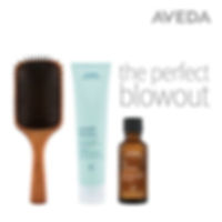 Aveda Modesto Mena and Co Salon Blow Out and Go Out