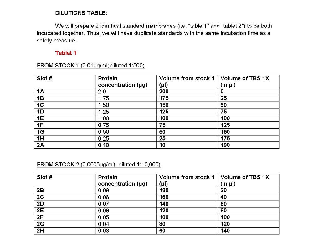 dot-blot dilutions protocol web_Page_3.jpg
