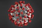 koronavirus.png