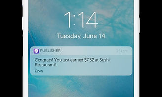 Publishers_Notification_LuckyDiem_edited