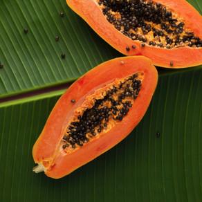 BIO:VÉGANE SKINFOOD - Vegane Pflege Bio Papaya mit AHA-Säure