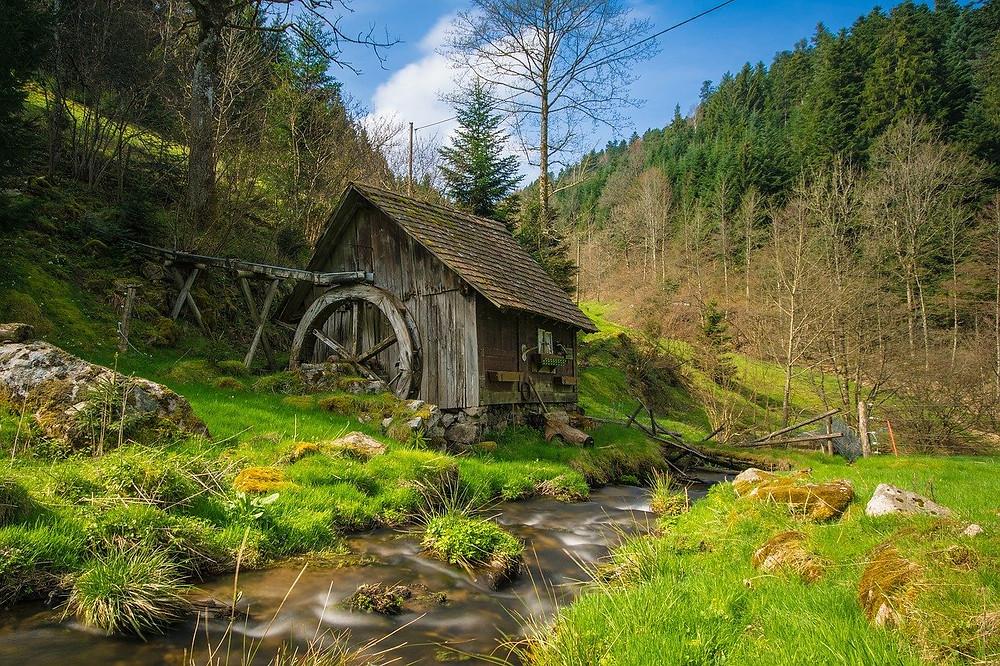 PURE! Das digitale Magazin - Slow Travel: Nachhaltig Reisen in den Schwarzwald
