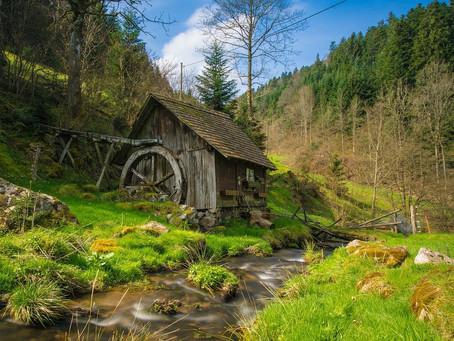Slow Travel: Nachhaltig Reisen in den Schwarzwald