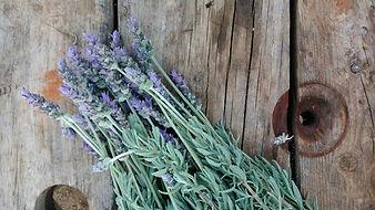 herbes aixada com eixida