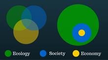 The Sustainability Spectrum