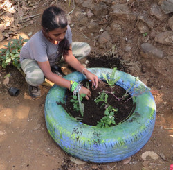 Planting in upcycled items