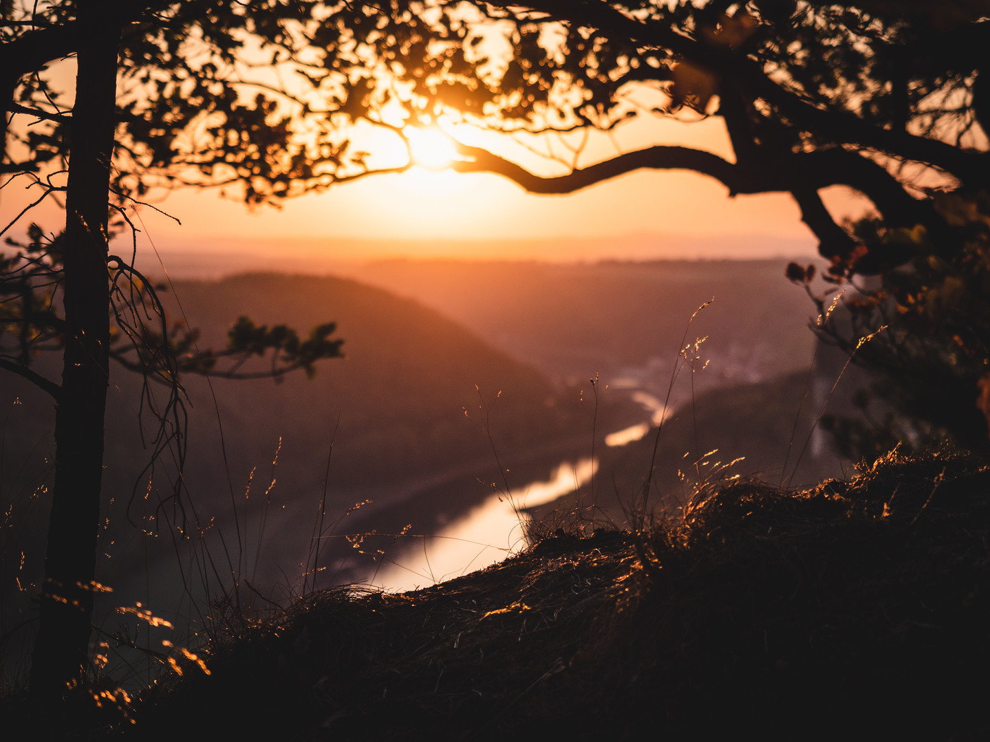 Saxonian Autumn Sun