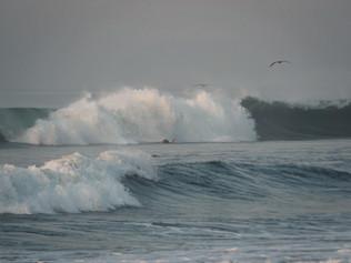 Surfing_El_Paredon_41.jpg