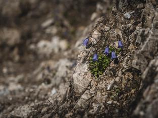 Hiking_E5_35.jpg
