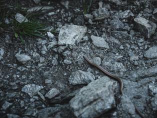 Hiking_E5_119.jpg