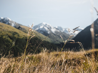 Hiking_E5_145.jpg