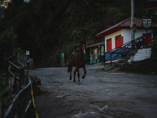 Colombia_108.jpg