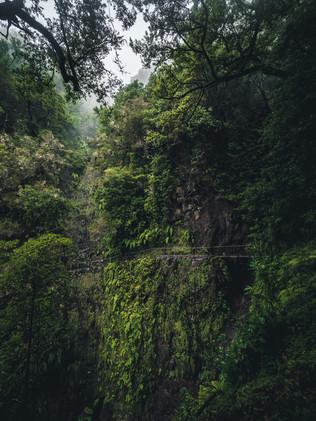 Crossing_Madeira_4.jpg