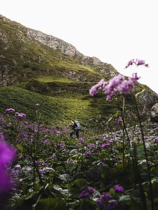 Hiking_E5_66.jpg