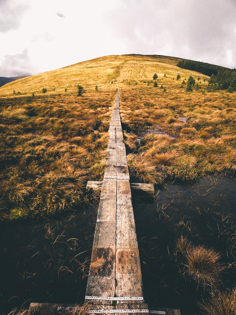 Narrow Paths