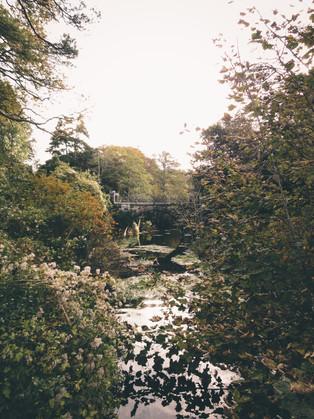 Ireland_12.jpg