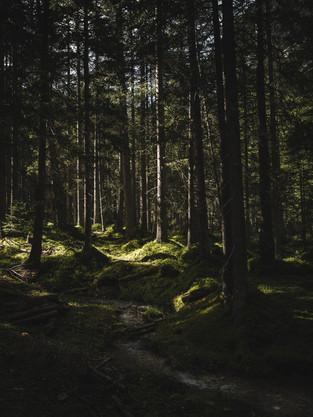 Hiking_E5_89.jpg