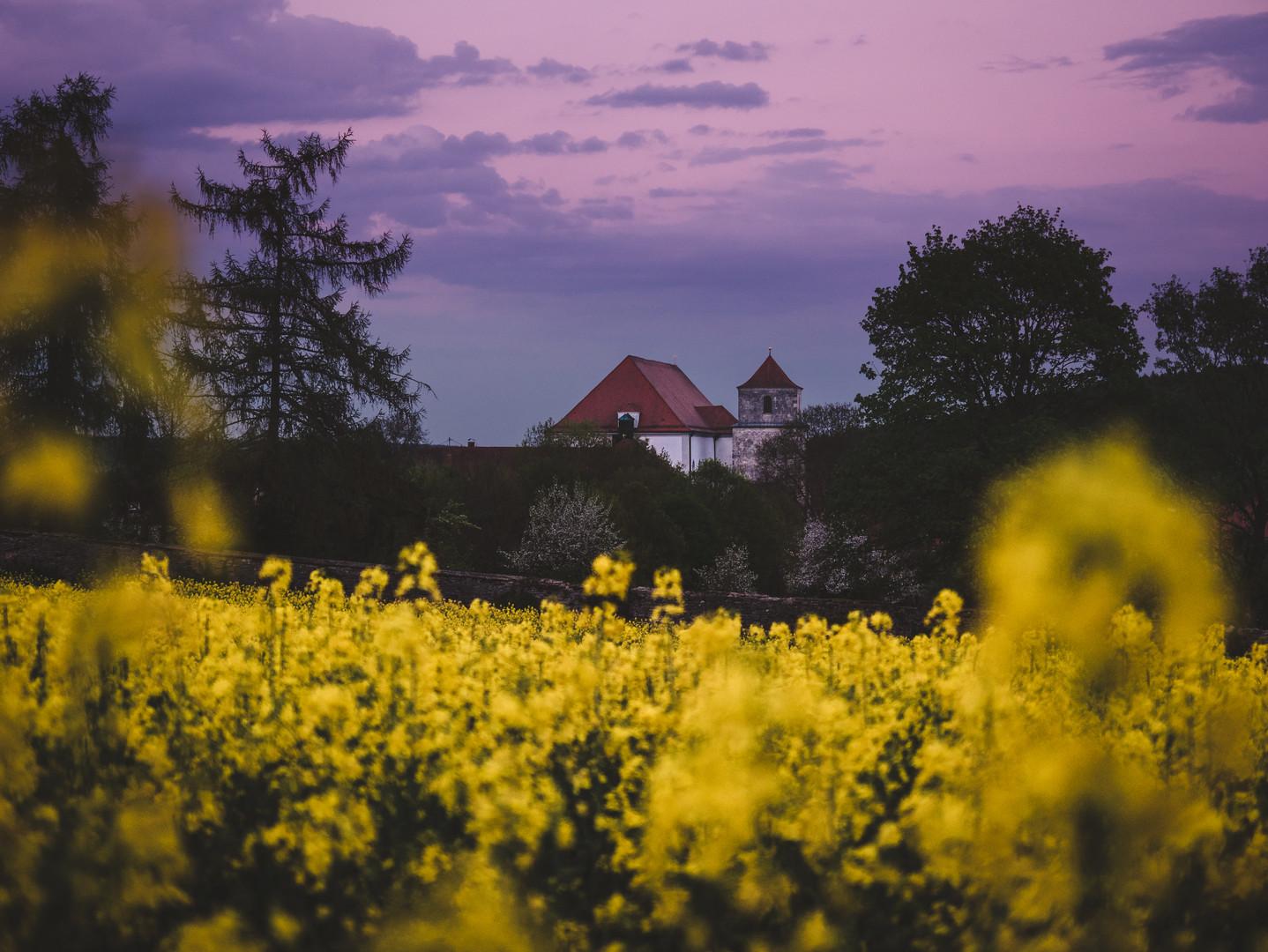 Through the fields at dusk