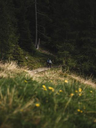 Hiking_E5_115.jpg