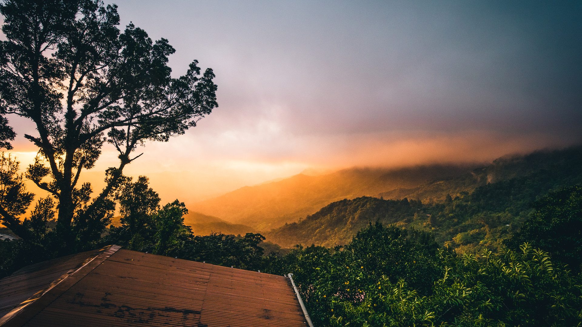 Orange sunset in the mountain forest of Panama