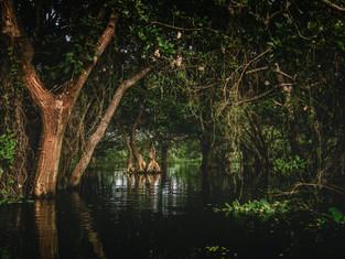 Nicaragua_18.jpg