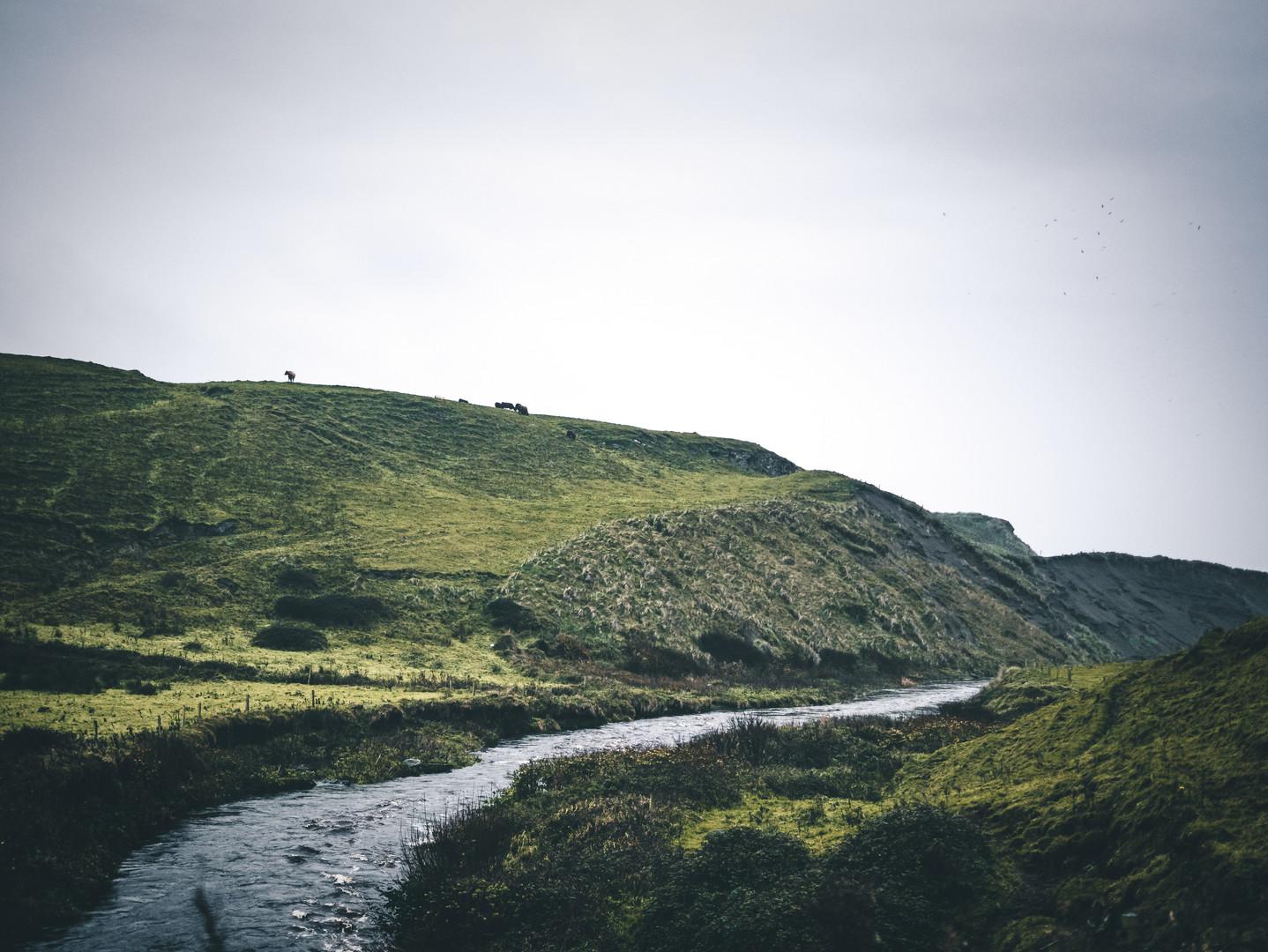Green Hills under Grey Sky