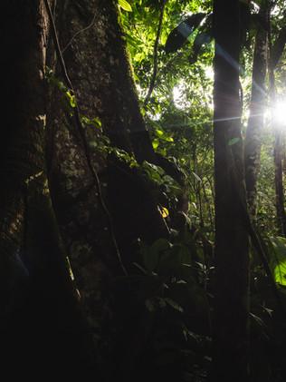 Colombia_139.jpg