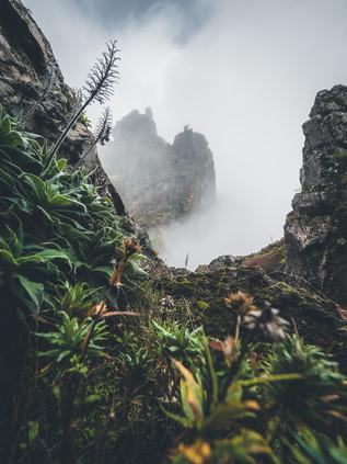 Crossing_Madeira_28.jpg