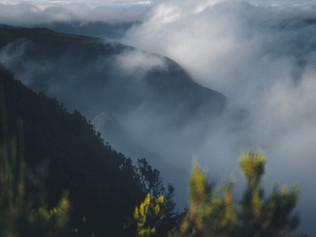 Crossing_Madeira_12.jpg